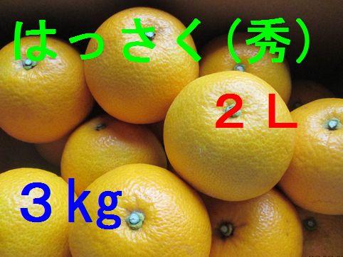八朔(秀)2L 3kg