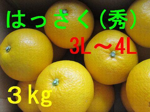 八朔(秀)3L〜4L混合 3kg
