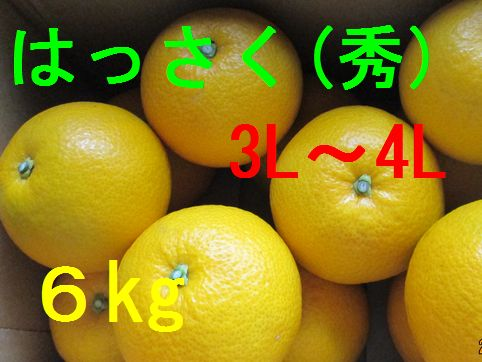 八朔(秀)3L〜4L混合 6kg