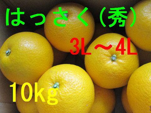 八朔(秀)3L〜4L混合 10kg