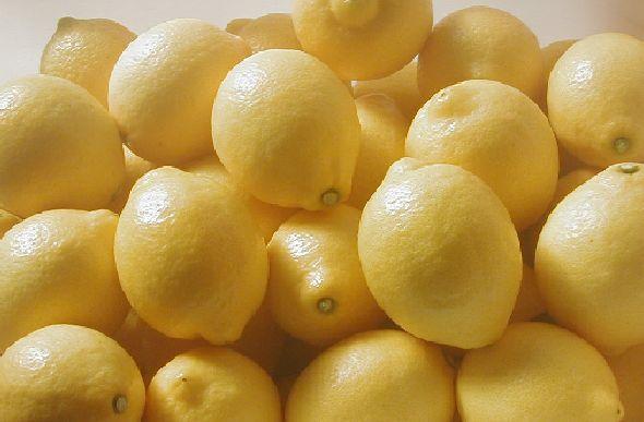 国産ハウスレモン(秀)M〜L 2kg