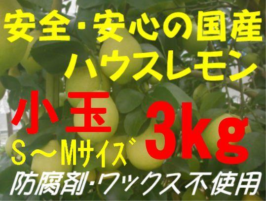 国産ハウスレモン(小玉)S〜M 3kg
