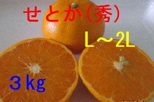 せとか(秀)L〜2L混合 3kg