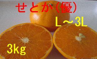 せとか(優)L〜3L混合 3kg