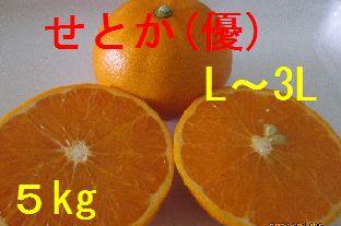 せとか(優)L〜3L混合 5kg