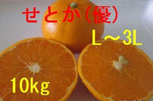 せとか(優)L〜3L混合 10kg
