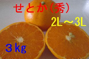 せとか(秀)2L〜3L混合 3kg
