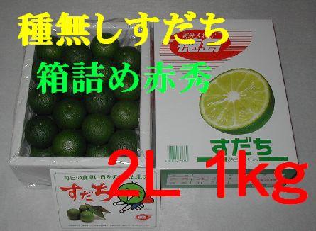 種無しすだち(箱詰め赤秀) 2L 1kg