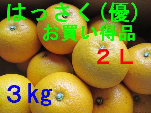 八朔(お買い得品)2L 3kg