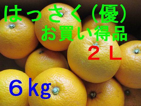 八朔(お買い得品)2L 6kg