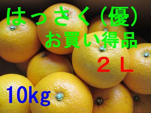八朔(お買い得品)2L 10kg
