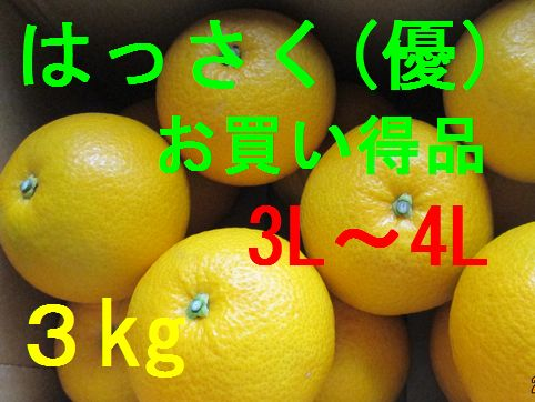 八朔(お買い得品)3L〜4L混合 3kg