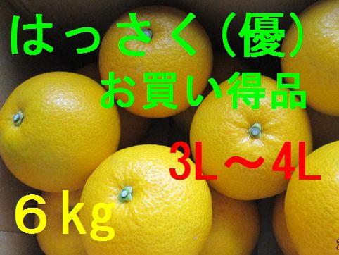 八朔(お買い得品)3L〜4L混合 6kg