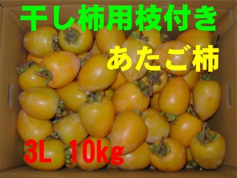 干し柿用枝付き(あたご柿)3L 10kg