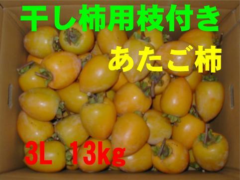 干し柿用枝付き(あたご柿)3L 13kg