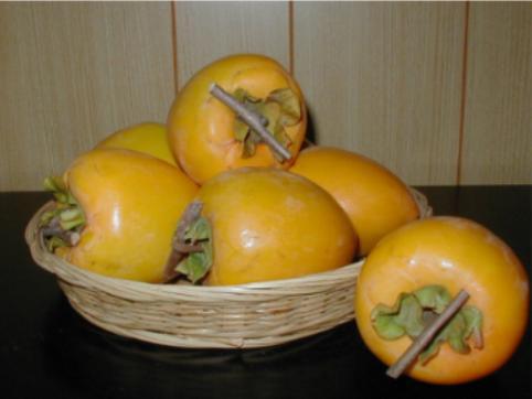 干し柿用枝付き(あたご柿)M 10kg