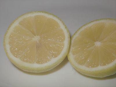 国産ハウスレモン(優)M〜2L 5kg