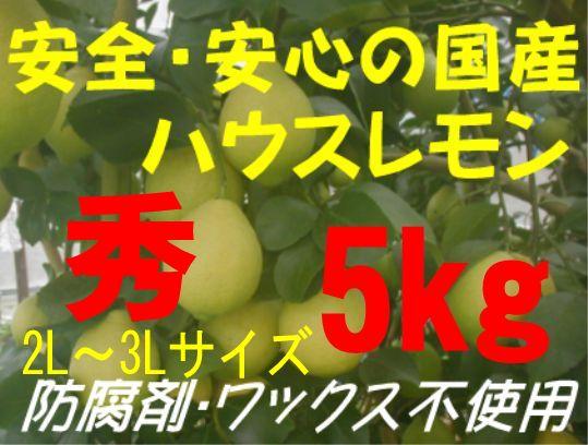 国産ハウスレモン(秀)2L〜3L 5kg