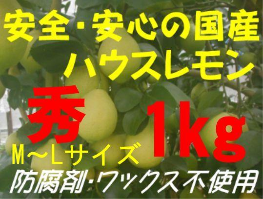 国産ハウスレモン(秀)M〜L 1kg
