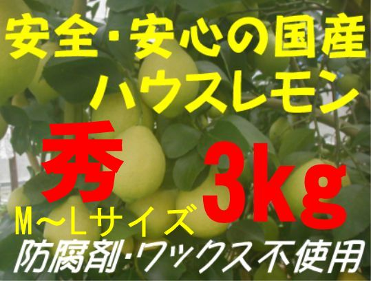 国産ハウスレモン(秀)M〜L 3kg