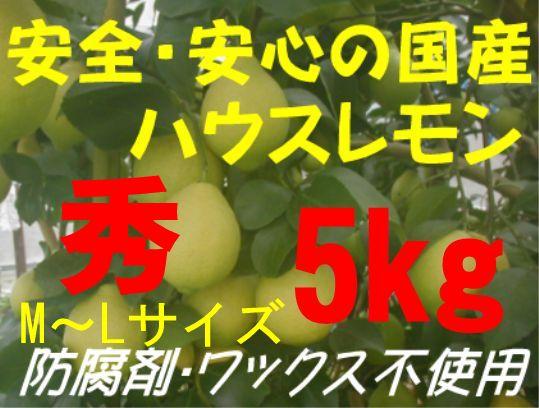 国産ハウスレモン(秀)M〜L 5kg