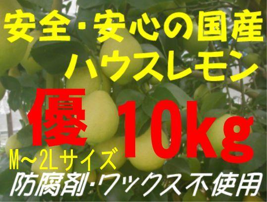 国産ハウスレモン(優)M〜2L 10kg